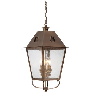 Darby Home Co Meriline 4-Light Outdoor Hanging Lantern