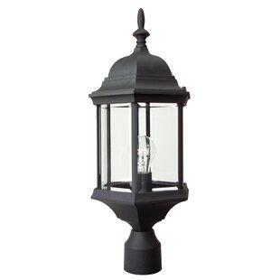 Oakhill 1-Light Matte Black Lantern Head by Charlton Home