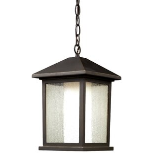 Andover Mills Olive Modern 1-Light Outdoor Hanging Lantern