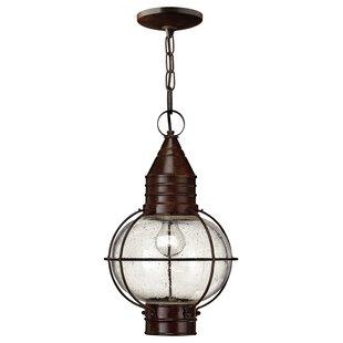 Beebe 1 Light Hanging Lantern By Williston Forge
