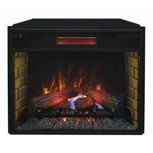 Leyden Electric Fireplace Insert by Darby Home Co