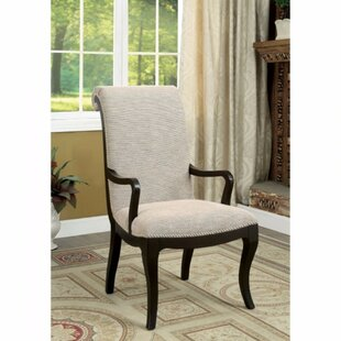 Darby Home Co Aric Armchair (Set of 2)