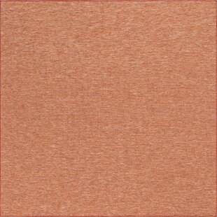 Fabry Terracotta Indoor/Outdoor Area Rug