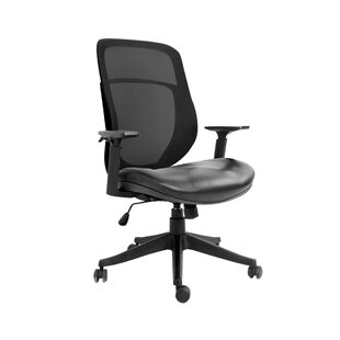 Prewitt Ergonomic Mesh Task Chair