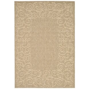 Little Italy Dark Beige Indoor/Outdoor Area Rug