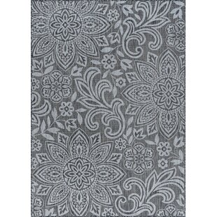 Koby Transitional Floral Charcoal Indoor/Outdoor Area Rug