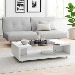 Crystal Coffee Table With Storage By Zipcode Design