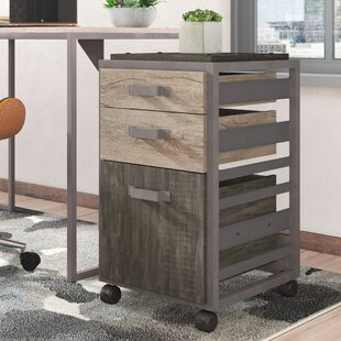 Rosemarie 3 Drawer Mobile Vertical Filing Cabinet