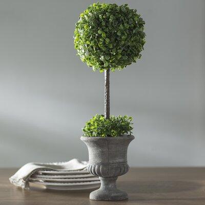 Boxwood Foliage Topiary in Urn Lark Manor