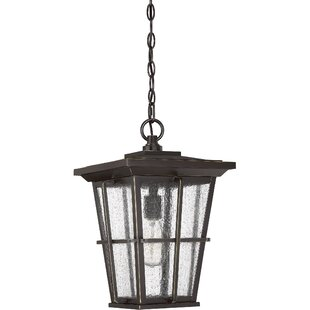 Eastvale 1-Light Outdoor Hanging Lantern