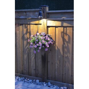 Moonrays 1-Light Outdoor Pendant