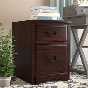 Darby Home Co Appleby Transitional 2-Drawer Vertical Filing Cabinet
