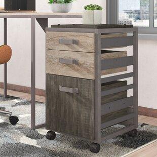 Greyleigh Rosemarie Industrial 2 Piece Desk Office Suite
