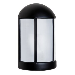 Bargain Donnie 1-Light Opaque Outdoor Flush Mount By Latitude Run