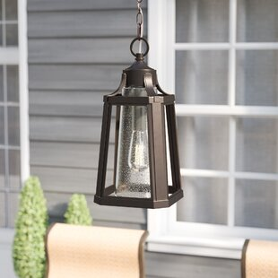 Nitish Palladian Bronze 1-Light Outdoor Hanging Lantern by Gracie Oaks