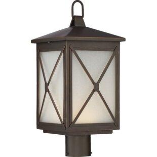 Laurel Foundry Modern Farmhouse Sagebrush 1-Light LED Lantern Head