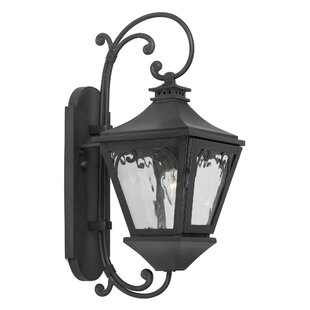 Fleur De Lis Living Rebecca 1-Light Outdoor Wall Lantern