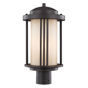 Best Price Dunkley Outdoor 1-Light Lantern Head By Darby Home Co