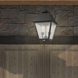 Darby Home Co Cynda 2-Light Outdoor Hanging Lantern