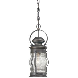 Beachcrest Home Laxford 1-Light Outdoor Hanging Lantern
