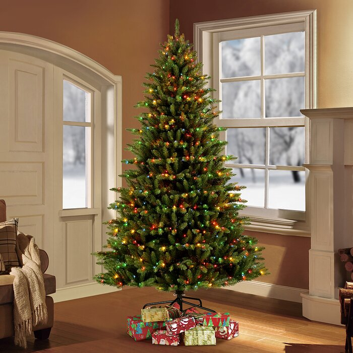 Pre Lit Christmas Tree.Pre Lit Fraser 7 5 Green Fir Tree Artificial Christmas Tree With 750 Multi Colored Lights With Stand