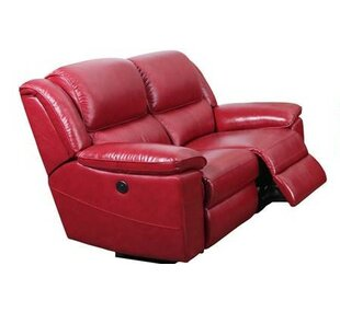 Durante Loveseat Power Recliner Red Barrel Studio