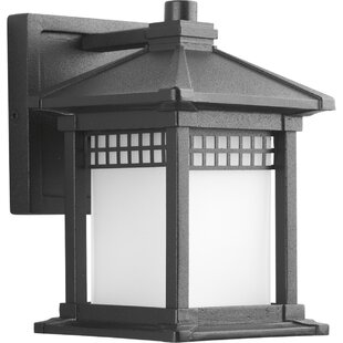 Online Reviews Triplehorn 1-Light Outdoor Wall Lantern By Alcott Hill