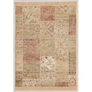 Fara Pastel Light Green/Tan/Red Area Rug by Castleton Home