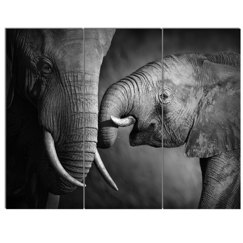 Designart Elephants Showing Affection 3 Piece Photographic Print On Wrapped Canvas Set Wayfair