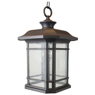 Order Falstaff 1-Light Outdoor Hanging Lantern By Charlton Home