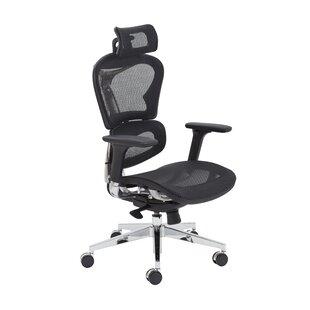 Ergonomic Mesh Office Chair By Symple Stuff
