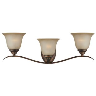 Pottersmoor 3-Light Vanity Light by Darby Home Co