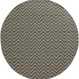 Heath Grey/Blue Chevron Indoor/Outdoor Area Rug