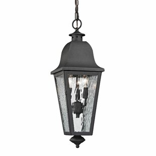 Hammontree 3-Light Outdoor Hanging Lantern