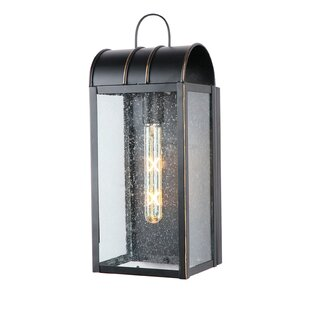 Dario Outdoor Wall Lantern by 17 Stories