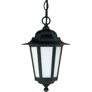 Alcott Hill Mayer 1-Light Outdoor Hanging Lantern