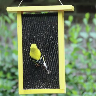 Birds Choice Solutions Recycled Tall Nyjer/Thistle Feeder