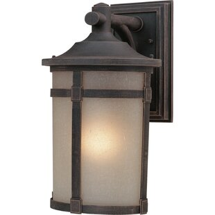 Latitude Run Russell 1-Light Outdoor Wall Lantern