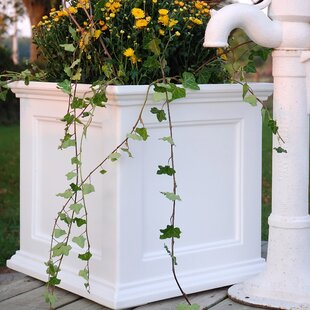 White Planters Youll Love Wayfair