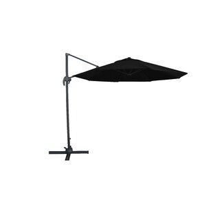 Fareham 10' Cantilever Umbrella by Freeport Park 2019 Sale