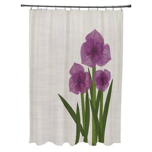 Amanda Amaryllis Floral Print Single Shower Curtain