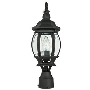 Godbey Outdoor 1-Light Lantern Head by Astoria Grand