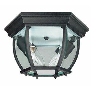 Charlton Home Higbee 2-Light Outdoor Flush Mount