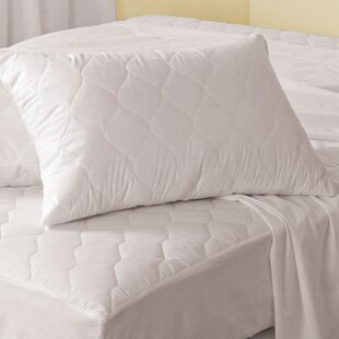 Antibacterial Pillow Protector (Set of 2)