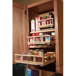 Rebrilliant Upper Cabinet Spice Rack Caddy Medium Pull Out Drawer