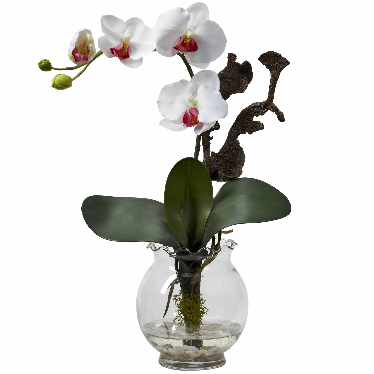 Nearly natural mini phalaenopsis with fluted vase silk flowers in nearly natural mini phalaenopsis with fluted vase silk flowers in white reviews wayfair mightylinksfo