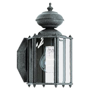 Raven 1-Light Outdoor Wall Lantern By Alcott Hill Outdoor Lighting