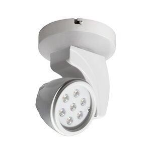 Reflex LED Outdoor Security Spotlight by WAC Lighting