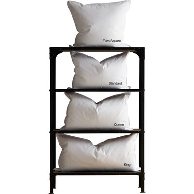 Alwyn Home Bannoncourt Feather Pillow Size: King
