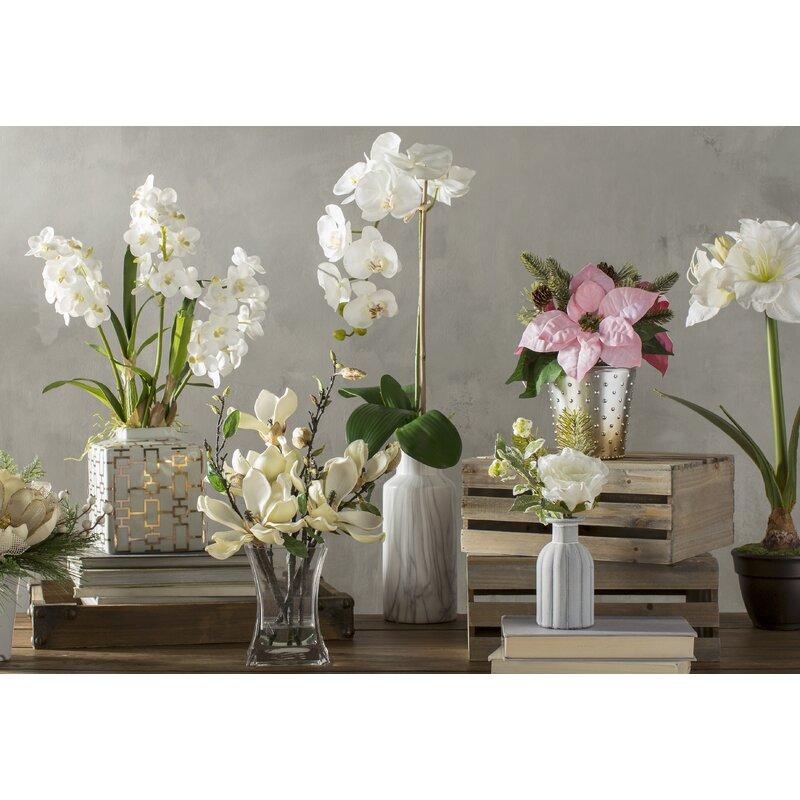 Willa Arlo Interiors Phalaenopsis Orchid Floral Arrangements in Vase ...